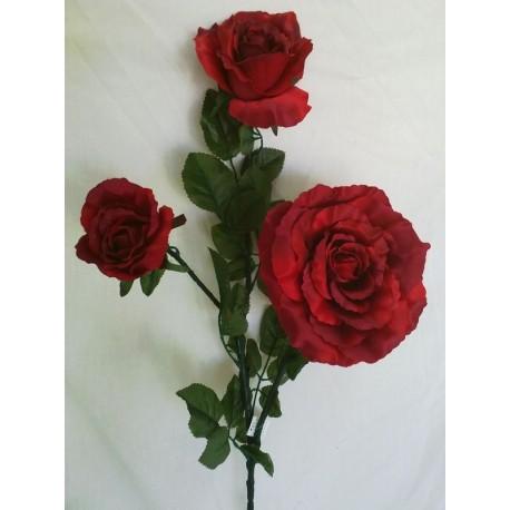 Róża gałązka potrójna