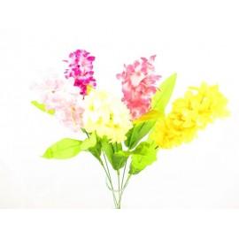 Hiacynt pojedynczy 52 cm, mix  kolorów