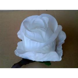 Róża pąk Kolor:
