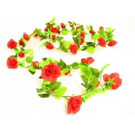 Oplot z róż