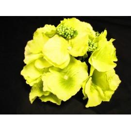 Hortensja główka kwiatowa 17 cm