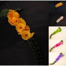 Molucella pojedyncza 56 cm, mix 6 kolorów