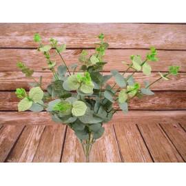 Eukaliptus bukiet 50 cm 4 gałązkowy