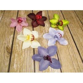 Orchidea, Storczyk główka kwiatowa Duża 15 cm mix kolorów