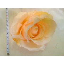 Róża pąk duży